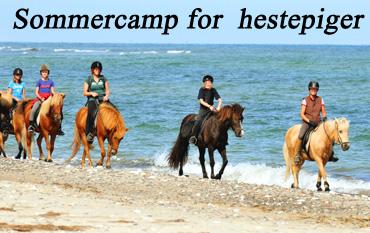 TV 2 besøger Hanstholm Camping se udsendelserne her